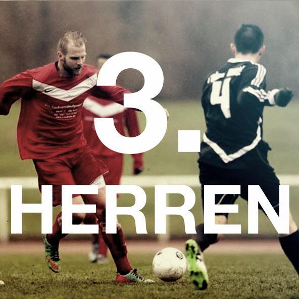 3. HERREN